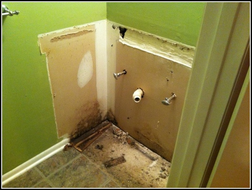 Bathroom Mold Removal Vinegar