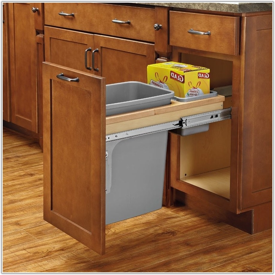 Cabinet Double Trash Can Pull Out